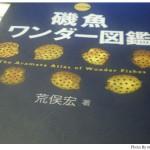 魚いっぱい!荒俣氏の『磯魚ワンダー図鑑 アラマタ版』が面白い。
