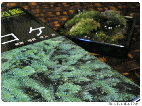 20090204 第5回「苔の変化。苔の種類を調べる」
