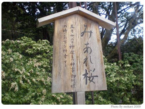 20090318-10 京都上賀茂神社の「みあれ桜」は「そうだ 京都、行こう。」です