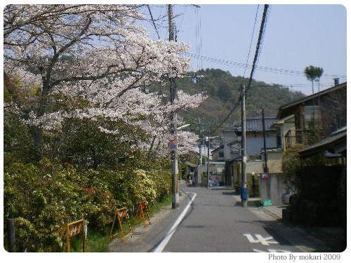 20090410-1 京都市花見:大田神社2009年