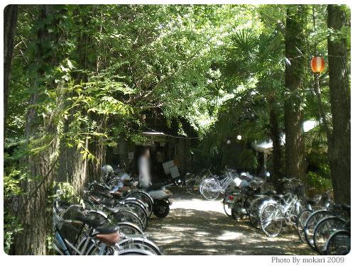 20090922-8 京大吉田寮の銀杏(ぎんなん)をひらう
