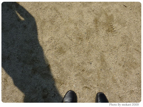 20091013-7 娘の運動会の写真撮影「LUMIX DMC-TZ7」大活躍!