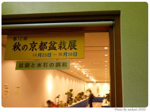 20091025-7 第12回秋の京都盆栽展を京都府立植物園で見る