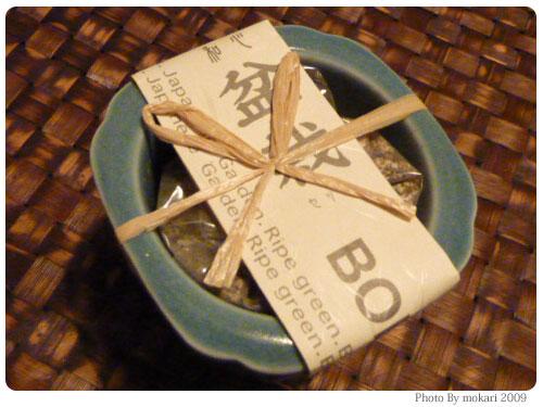20091117-5 イノブンで買った盆栽セット