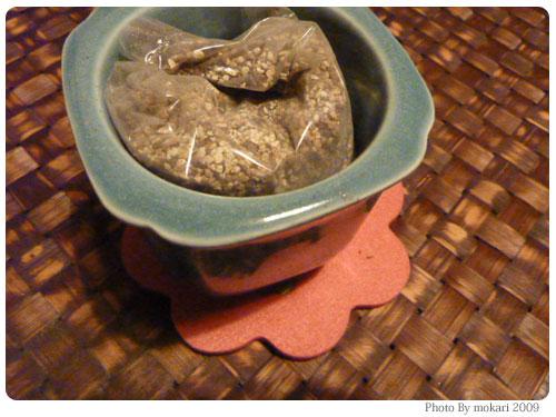 20091117-7 イノブンで買った盆栽セット