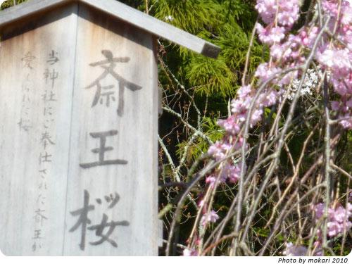 20100412-16 京都市花見:上賀茂神社2010年