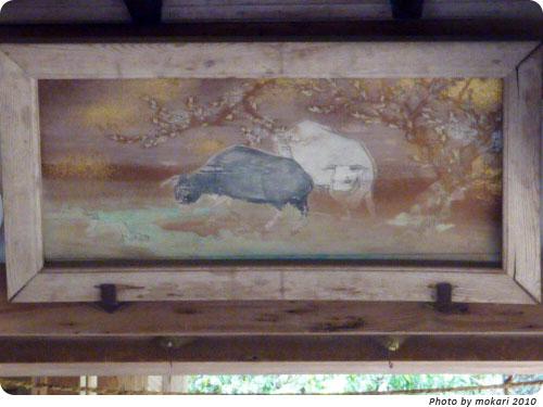 20100509-5 大田神社2010年 カキツバタ群落を見に