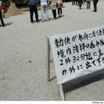 葵祭(2010年)を、上賀茂神社で見る(2)