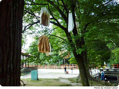 20100807-8 京都精華大学とコラボ。上賀茂神社アートプロジェクト2010