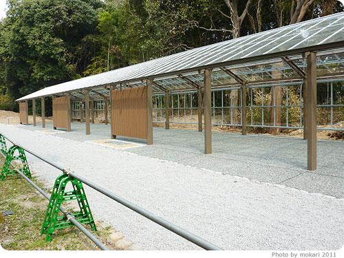 201103018-14 京都府立植物園に梅を見に(2011年3月)