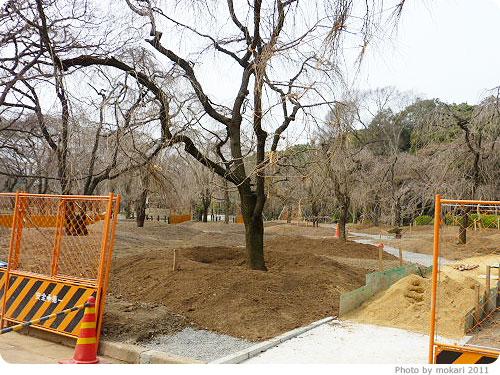 201103018-15 京都府立植物園に梅を見に(2011年3月)