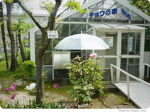 20110613-74 夏休みに子連れで。京都「竹田」にある、プラネタリウム