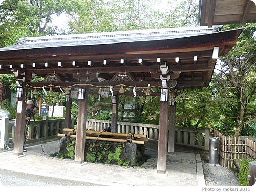 20110922-12 長岡天満宮で、苔を見てきた。