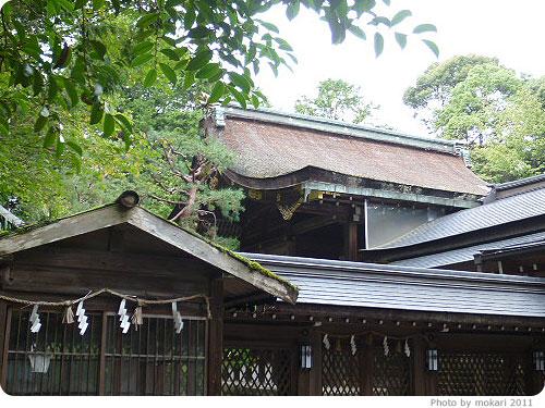 20110922-17 長岡天満宮で、苔を見てきた。
