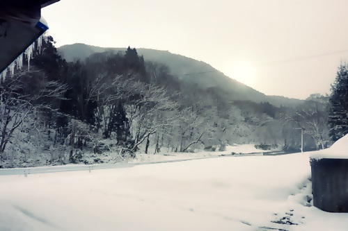 P1040985 家族で映画「おおかみこどもの雨と雪」を見た