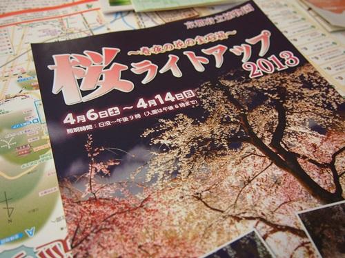 P3124031 3月桜はまだ。京都府立植物園、これから楽しみな花(2013年)