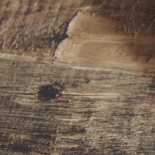 P3265553-500 写真撮影の背景に、「壁紙」