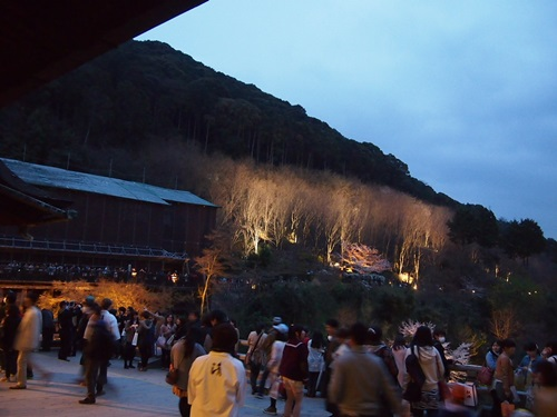 P3294680 清水寺の夜の特別拝観に行きました(2013年3月)