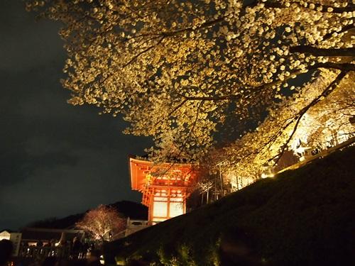 P3294741 清水寺の夜の特別拝観に行きました(2013年3月)