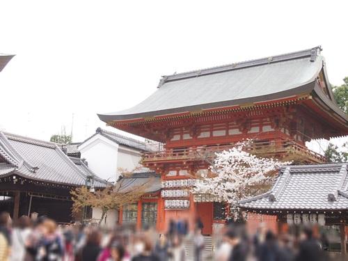 P3314796. 八坂神社におまいり&桜(2013年3月)