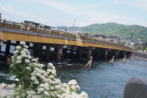 P4296143 宇治橋