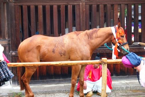 P5152950 雨の葵祭(2014年)上賀茂神社でみる