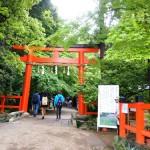 大田神社でかきつばたを見る(2014年5月)
