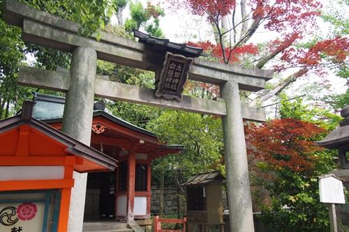 P516626 八坂神社