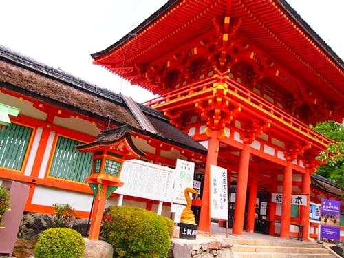 P6186890 上賀茂神社で茅の輪(ちのわ)を見ました
