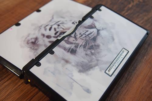 P7176748 Nintendo 3DS ホワイトタイガー