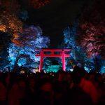 下鴨神社 糺の森の光の祭を見に行く(2016年夏)