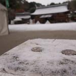 京都に雪がふりました。ちょっと積もりました。(2012年12月)