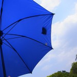 すごい雨!ユーロシルムの傘、愛用中