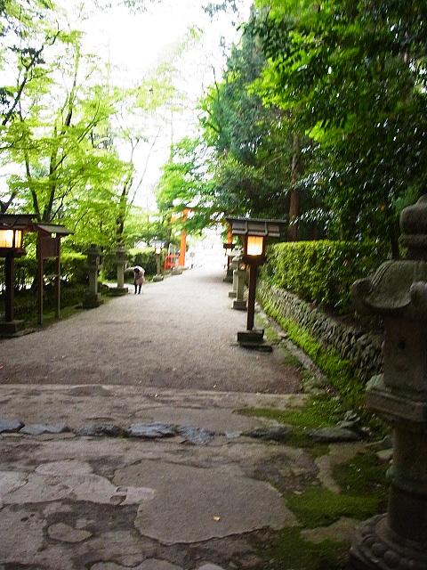 R1154135 大田神社2012年 かきつばたを見に