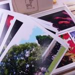 キレイに撮れた写真をレトロに雰囲気よく残せるデジカメプリントサービス